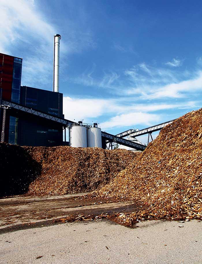 SEDIS énergie industrie biomasse