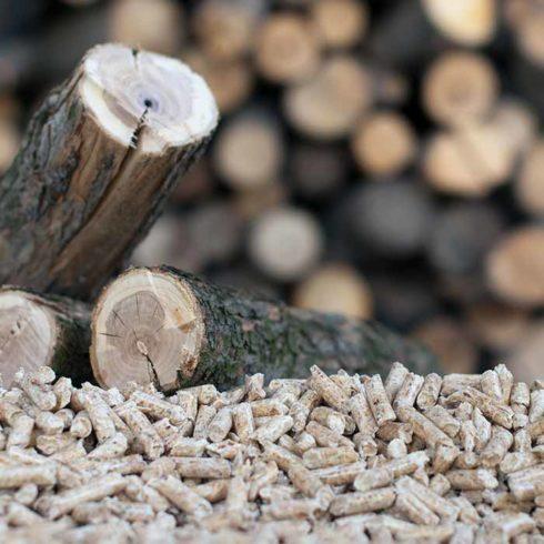 Sedis industrie biomasse